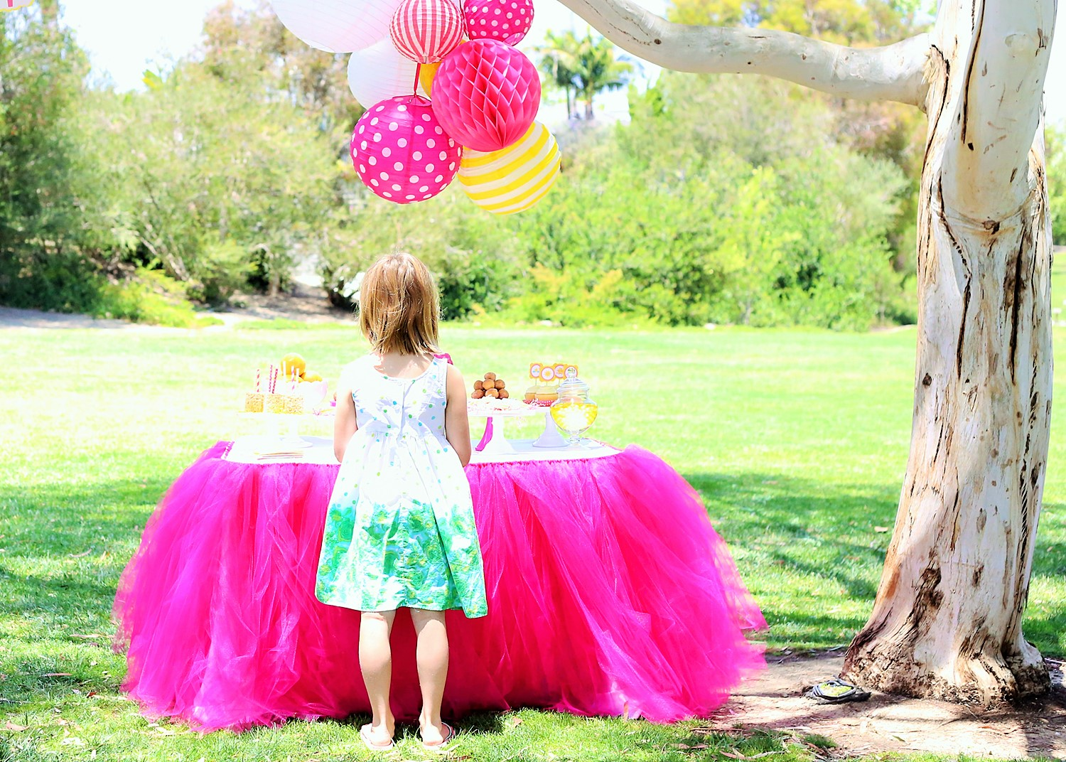 sunshine and lemonade party with custom table skirt