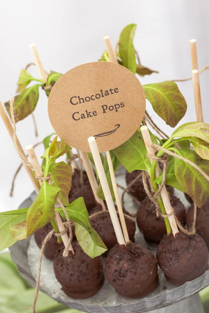 Rustic Earthy Bridal Shower Chocolate Cake Pops