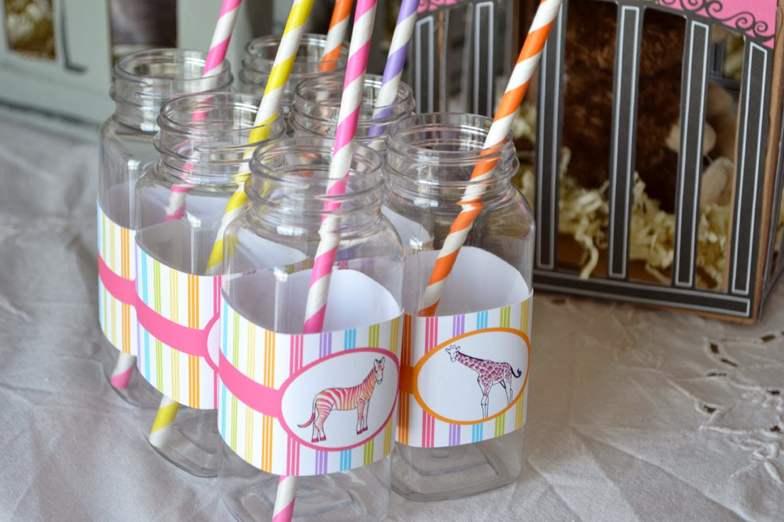 rainbow zoo party drink carafes