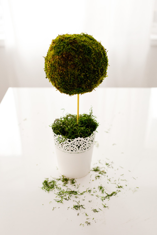 DIY Spring Topiary 6