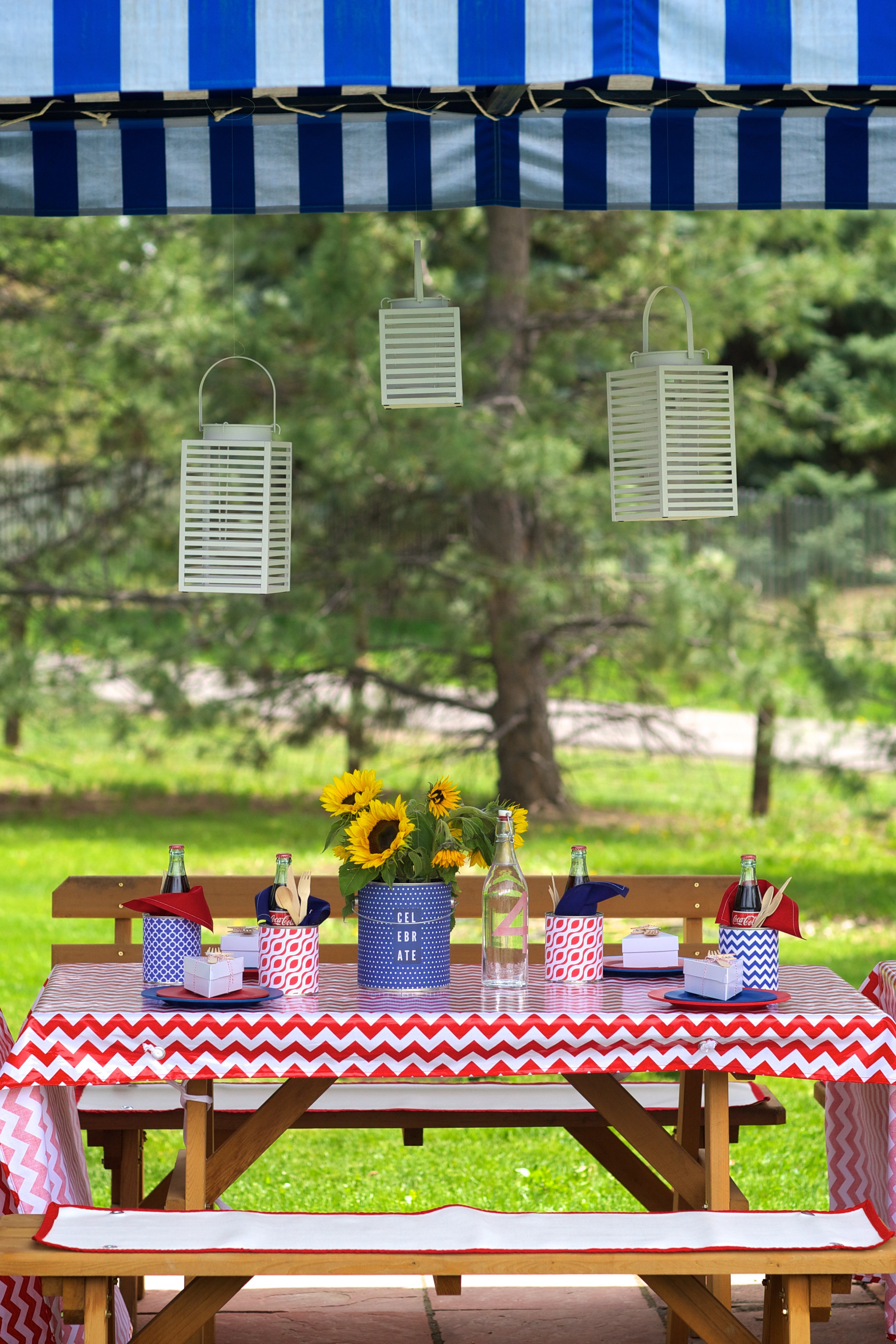 Entertaining Shoppe 4th of July Party Picnic Decor
