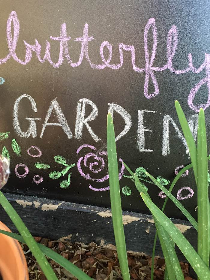 Butterfly Garden Party Chalk Art