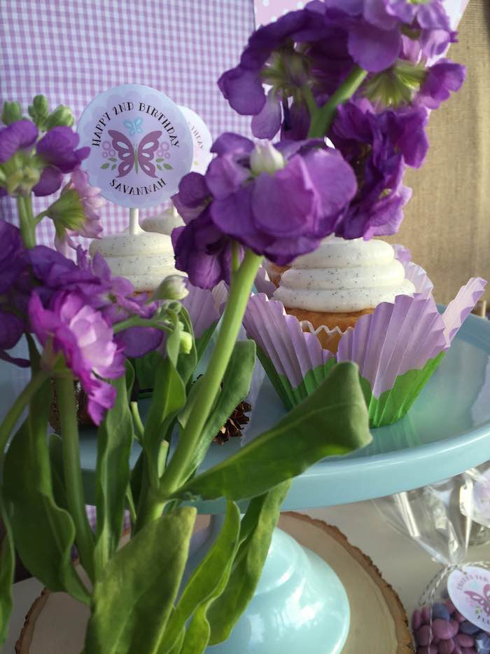Butterfly Garden Party cupcakes