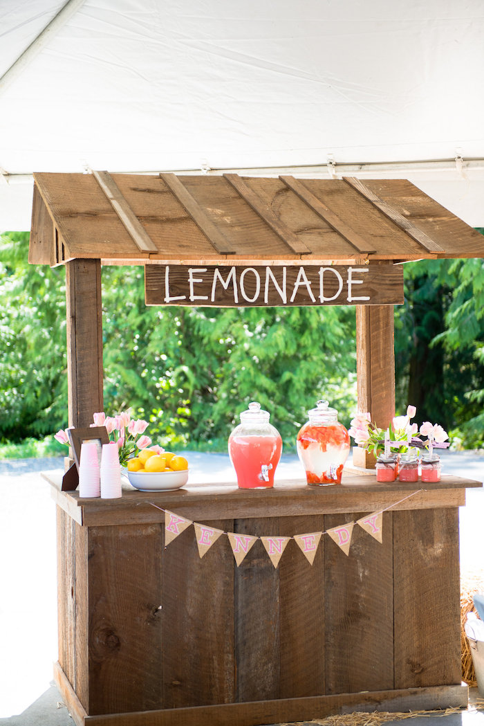 Pink brown pony party for Rustic lemonade stand
