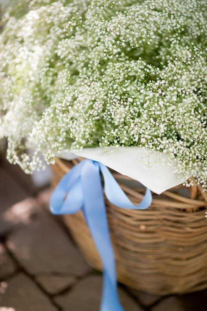Vintage Up Up & Away Party Baby's Breath