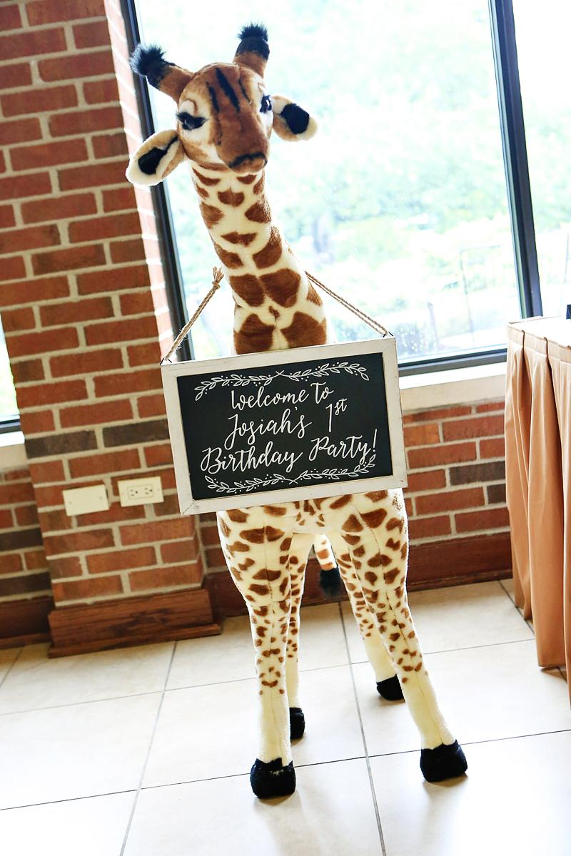 safari birthday party